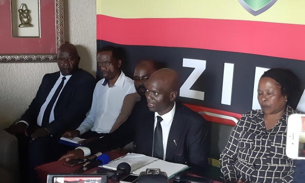 ZIFA should hold themselves accountable for the Logarusic fiasco