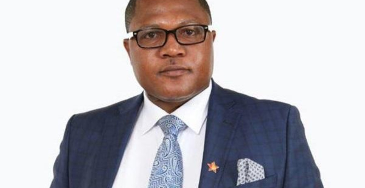 Warriors critic Energy Mutodi sacked from government